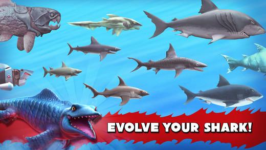 Huấn luyện cá mập từ nhỏ