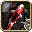 iFish Pond for iOS