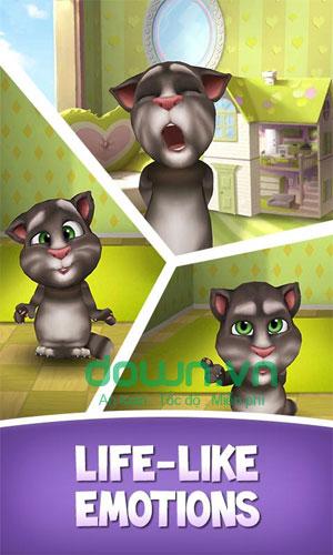 Tương tác với mèo Tom trong My Talking Tom