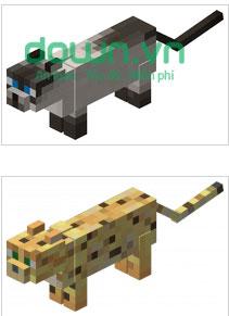 Ocelot - Cat