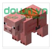 Pig - Lợn