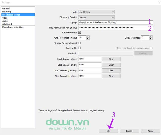 Sao chép dữ liệu vào 2 ô Server và Stream Key
