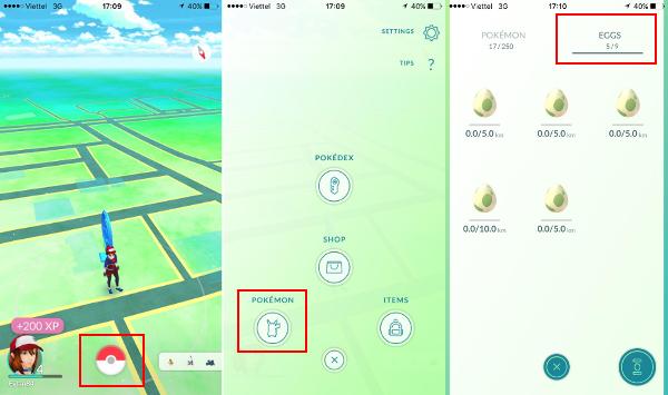 Hướng dẫn ấp trứng Pokemon GO