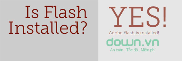 Máy đã cài đặt Adobe flash player