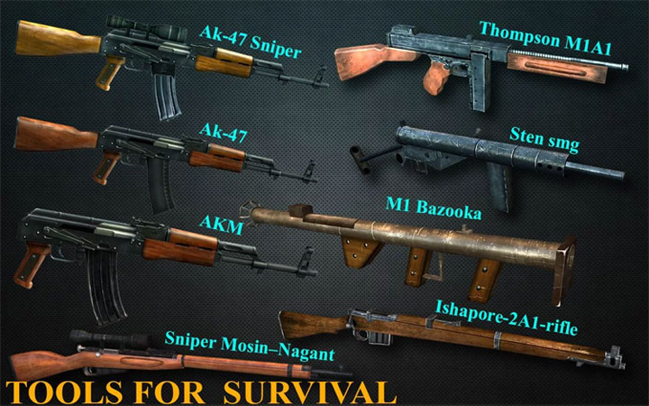 Hệ thống vũ khí đa dạng