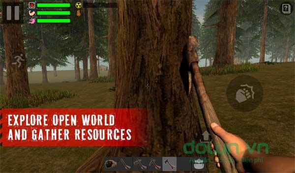 Khai thác các nguồn tài nguyên sẵn có trong rừng