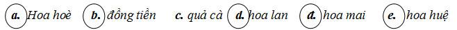 Đáp án câu 7