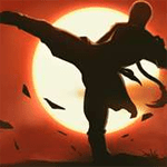 Kungfu Shadow Fighting