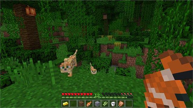 Gói game Minecraft