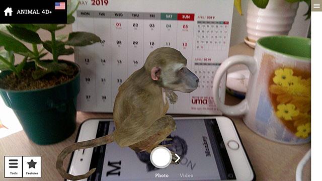 Hình ảnh con khỉ 4D