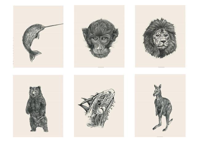 Hình ảnh 4d cho Animal 4D